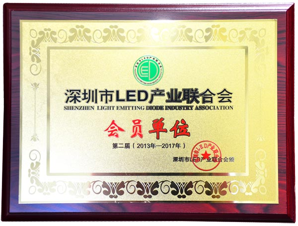 Member of Shenzhen LED Industry Association